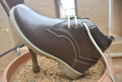 elevato shoes 2