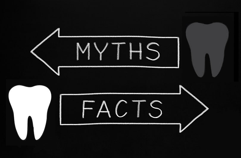 dental facts / myths
